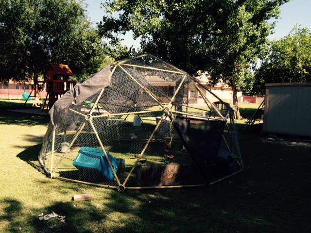Geodesic Dome PVC - Michael Bailey - Customer Reviews of Our